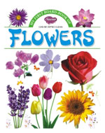 My First Board Book of  Flowers04