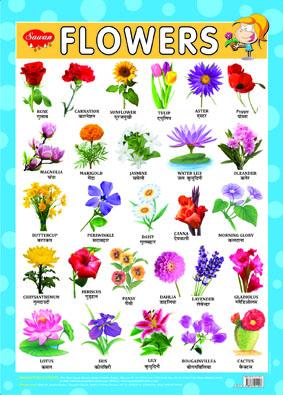 Flowers (Chart 43x60)