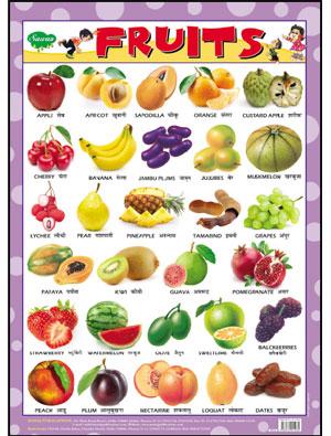 Fruits (Chart 43x60)
