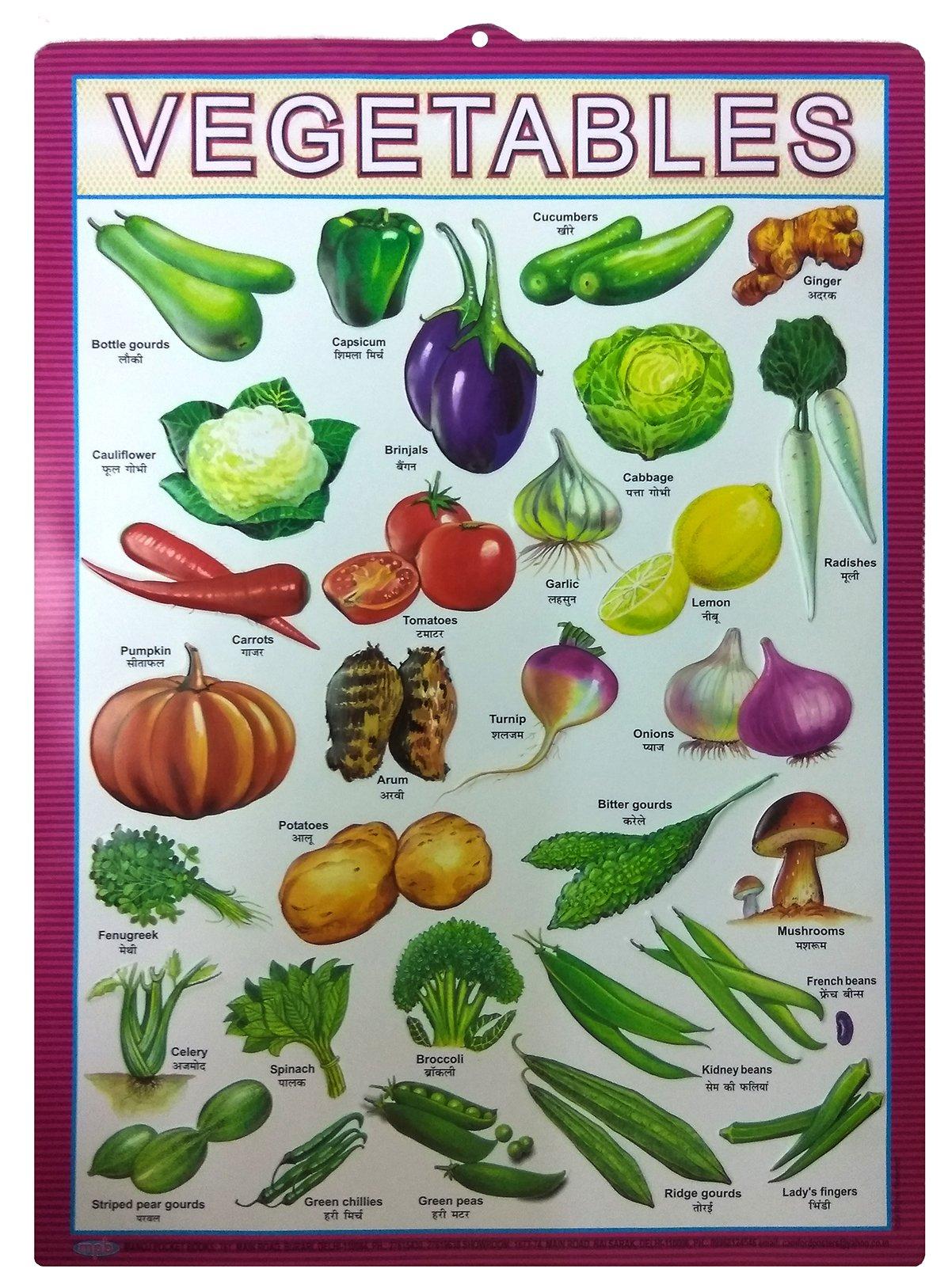 Vegetables (Chart 43x60)
